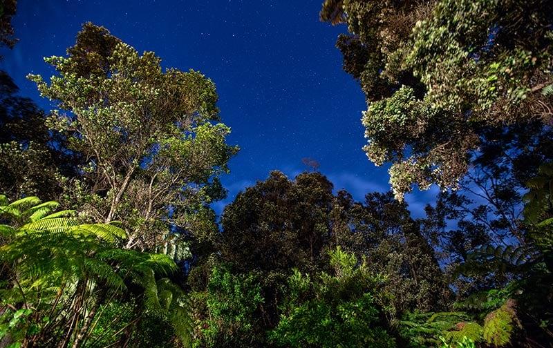 Chalet Kilauea Hotel Stars