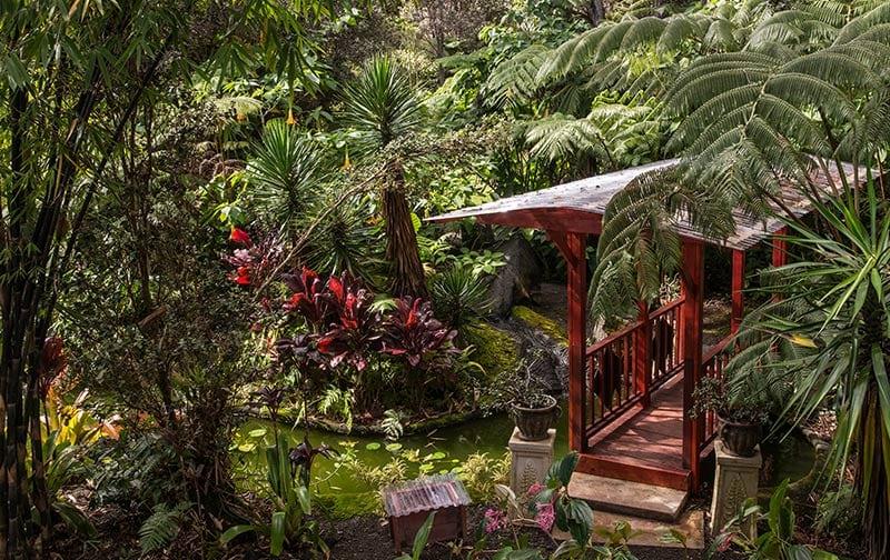 Chalet Kilauea Hotel Bridge Pond Area
