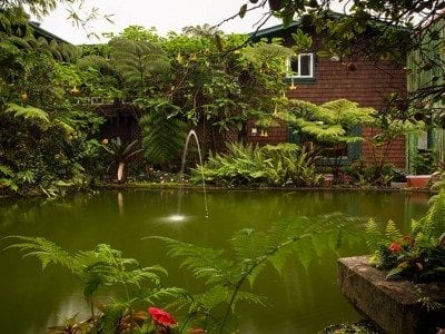 Chalet Kilauea Hotel Pond