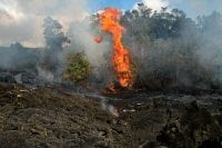Picture of Kilauea Volcano Tours