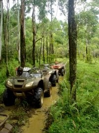 Photo of ATV in forest